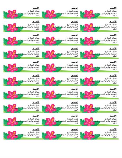 التسميات الاستوائية (30 لكل صفحة)