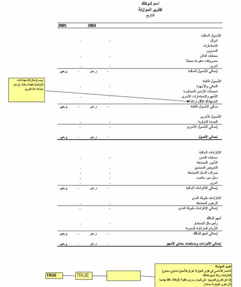 تقرير الميزانية لعامين مع الإرشادات