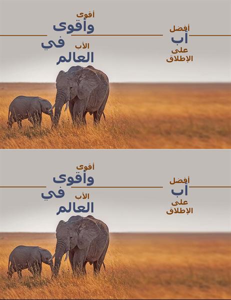 بطاقة عيد الأب عليها فيل يمتاز بالحكمة