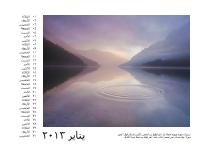 تقويم صور من 12 شهراً للعام 2013