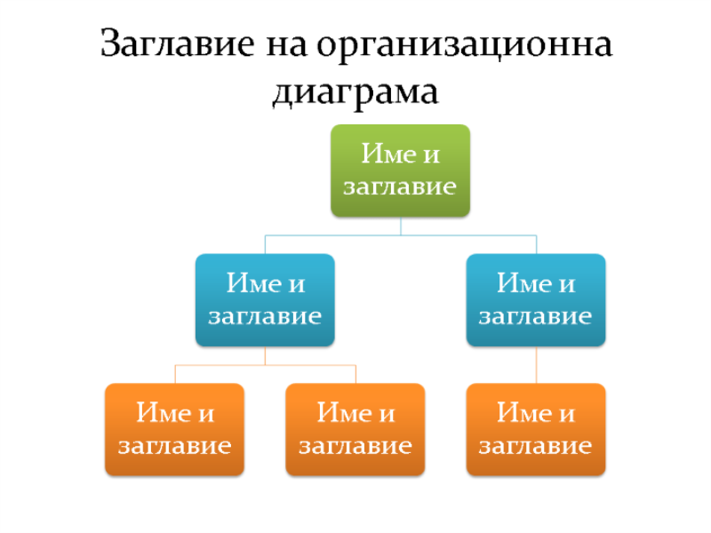 Основна организационна диаграма