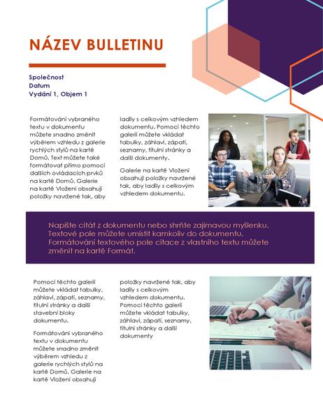 Bulletin (Exekutivní design, 2 stránky)