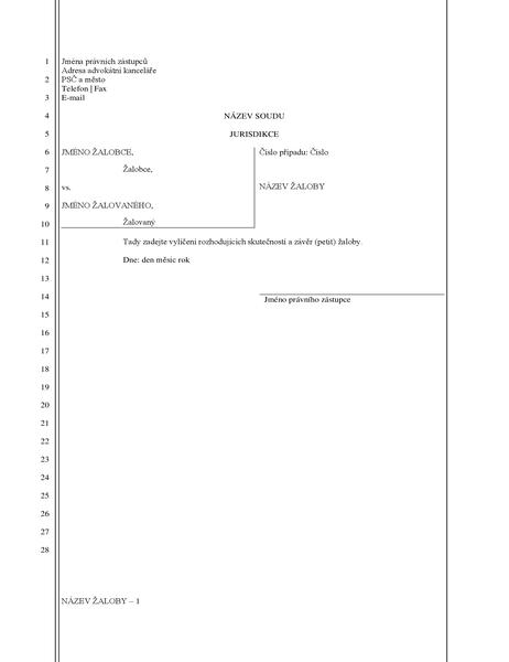 Formulář žaloby (28 řádků)