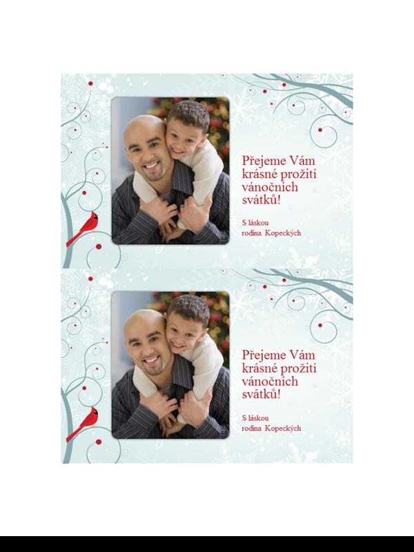 Sváteční přání s fotkou a sněhovými vločkami (dvě na stránku)