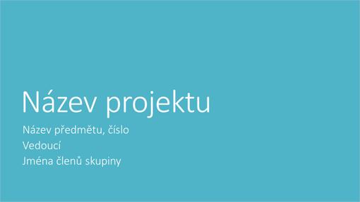 Prezentace skupinového projektu (metropolitní motivy, širokoúhlá)