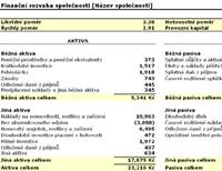 Finanční rozvaha s poměry a provozním kapitálem