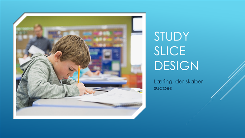 Udsnit, Studie-design
