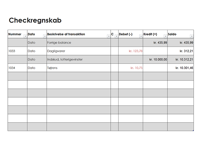 Checkregnskab (enkelt)