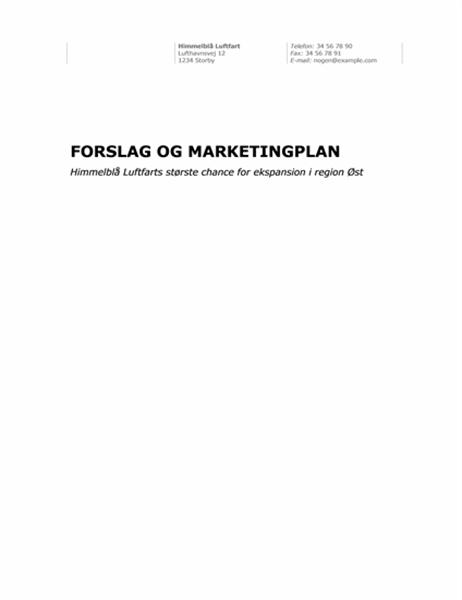 Forretningsrapport (professionelt tema)