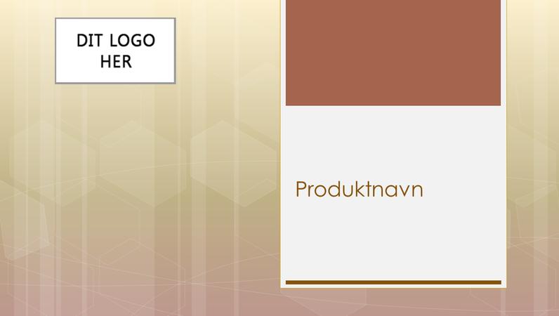 Præsentation af virksomhedsproduktoversigt