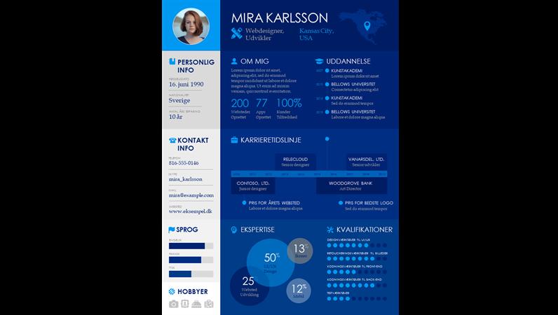 Infografisk CV med tidslinje