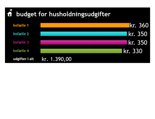 Budget for husholdningsudgifter