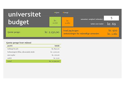 Universitetsbudget