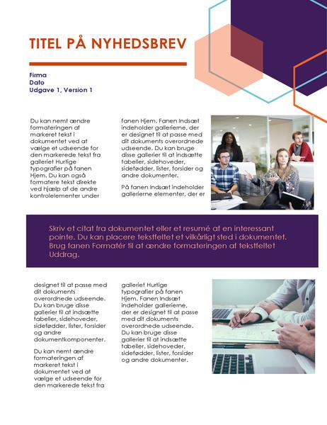 Nyhedsbrev (Executive design, 2 sider)