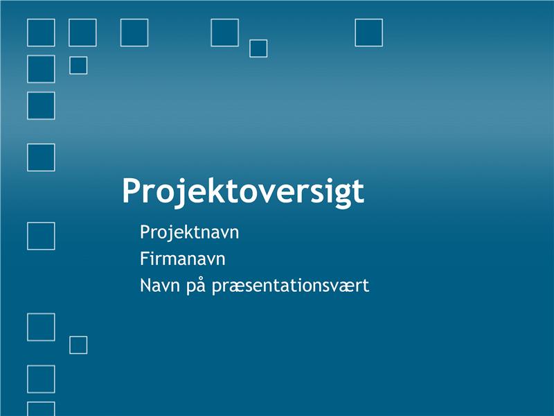 Præsentation til projektoversigt