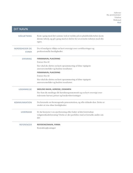 CV (designet Tidløst)