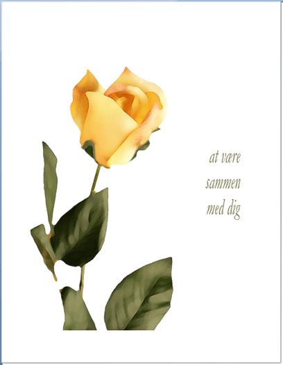 Kærlighedskort (med rose)
