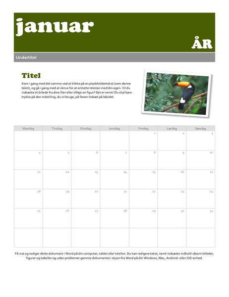 Snapshot-kalender