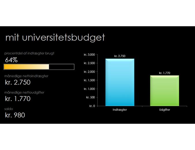 Mit universitetsbudget