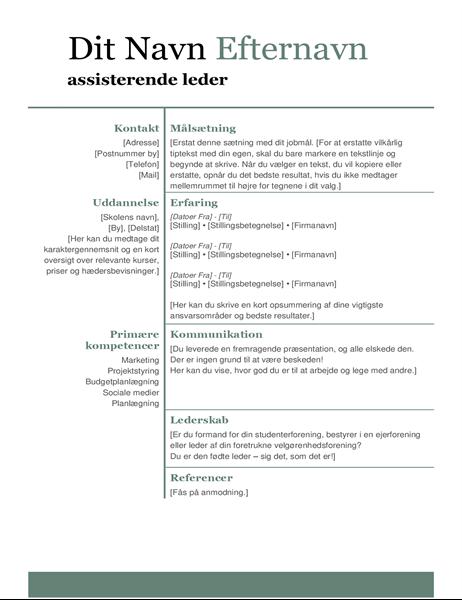 Grundlæggende moderne CV
