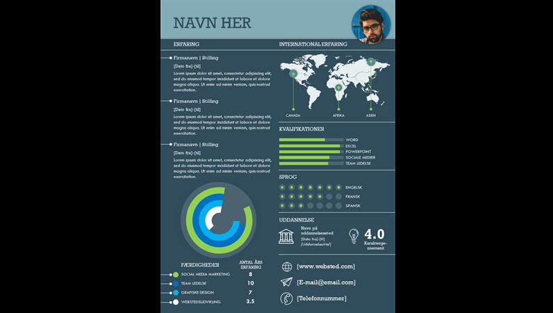 Internationalt infografisk CV