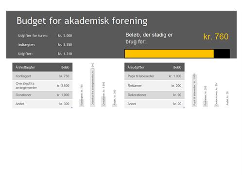 Budget for en akademisk forening