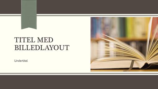 Akademisk præsentation (widescreen)
