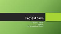 Gruppepræsentation (Berlin-temaer, widescreen)