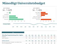 Månedligt budget for universitetsstuderende