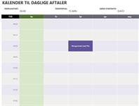 Kalender over dagens aftaler