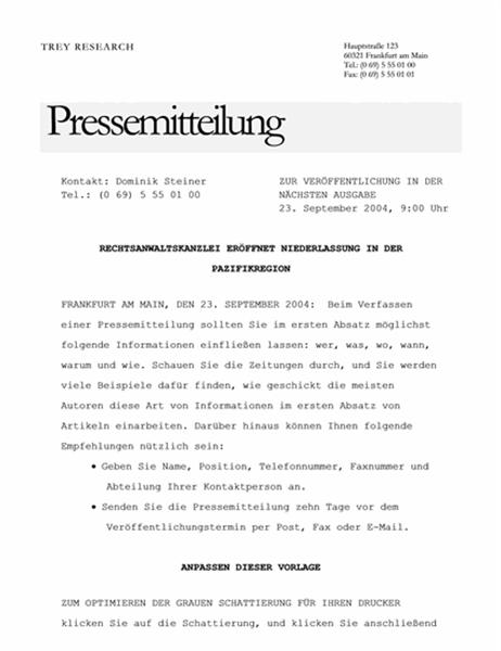 Pressemitteilung (Elegantes Design)