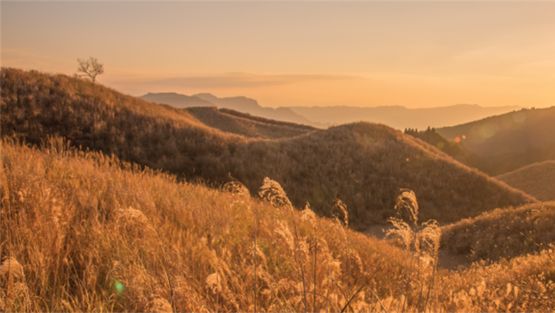 Facebook-Banner mit Landschaftsmotiven
