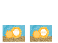 Einladung (Design mit Sonne und Sand)