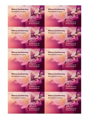 Επαγγελματικές κάρτες (φωτογραφία με λουλούδι)