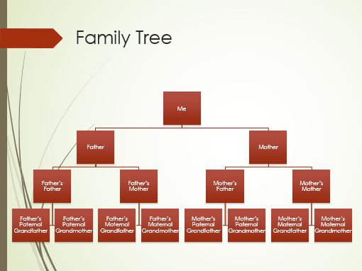 Family Tree Chart Vertical Green Red Widescreen Office Templates