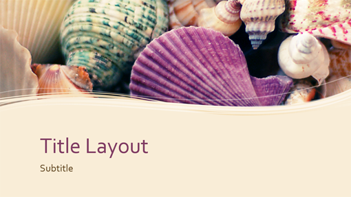 Seashells nature presentation (widescreen)