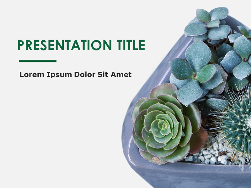 Botany design slides