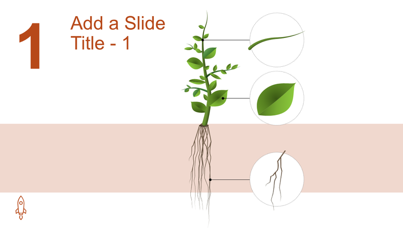 Animated tree growth graphic