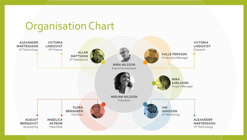Team organisation chart
