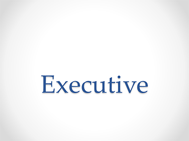 Executive