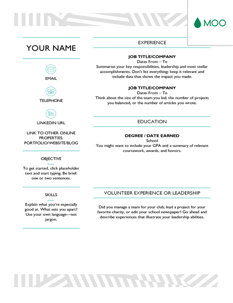 creative cv  designed by moo
