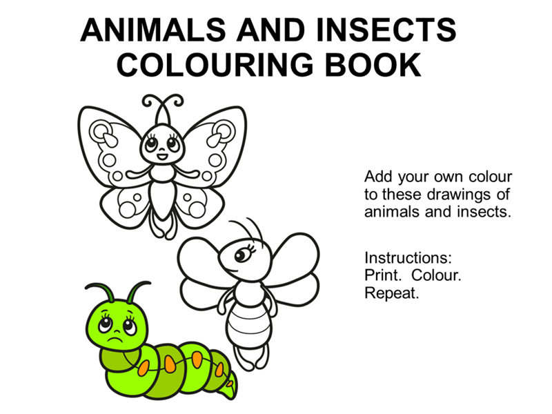 Animals and insects colouring book