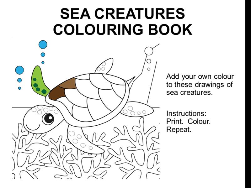Sea creatures colouring book