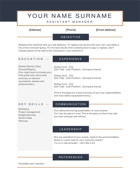 Minimalist CV