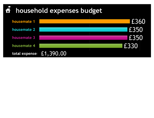 Household expense budget