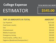College expense estimator