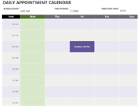 Daily appointment calendar
