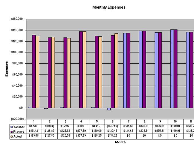 Detailed expense estimates