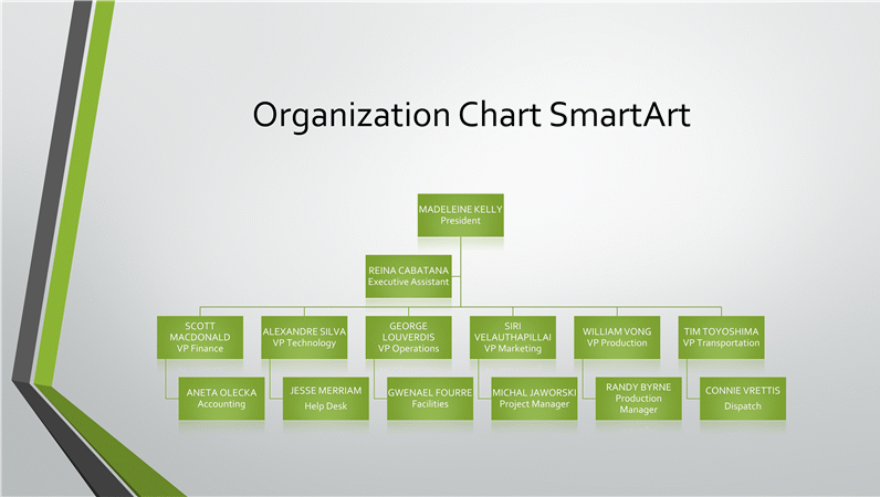 Organizational chart (gray, green, widescreen)