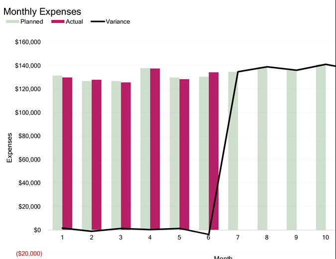 Business expense budget